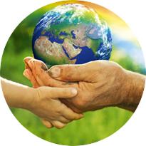 Занятия по экологии - подборка лучших уроков